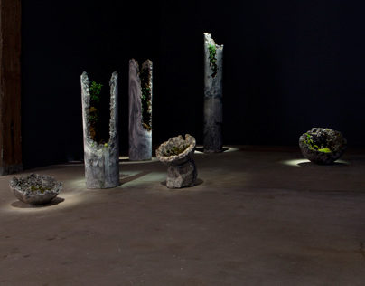 NSW Visual Arts Fellowship for Emerging Artists 2013