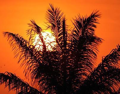 Sunset/Sunrise Photography