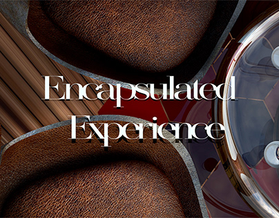 Encapsulated Experience