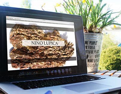 Sito web - Nino Lupica