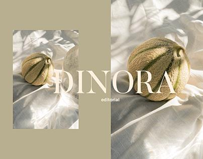 Editorial Photography / DINORA
