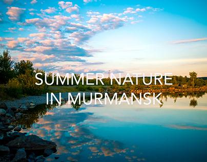 Summer nature in Murmansk