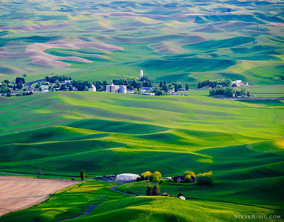 Evening on the Palouse