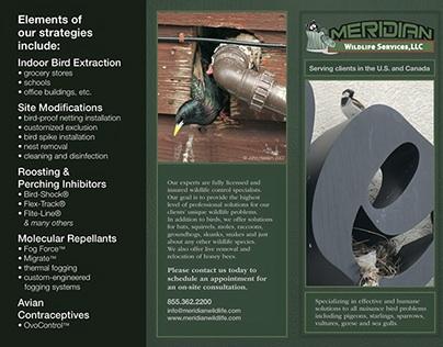 Meridian Wildlife Services – Brochures