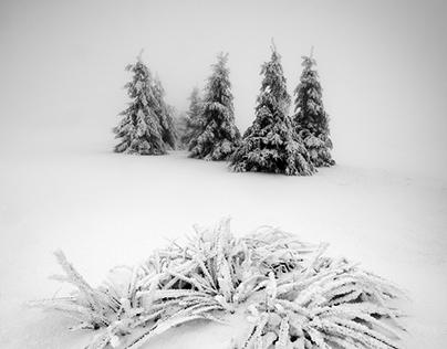 Frosty Ore Mountains