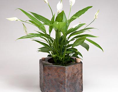 Eco-pot