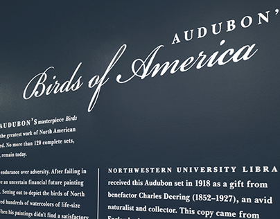 Northwestern Audubon Exhibit