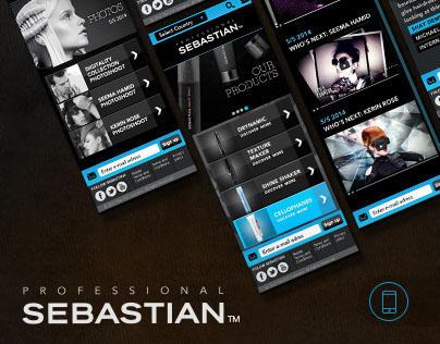 Responsive Design for Sebastian Professional