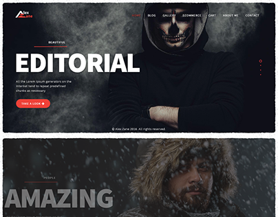Alex Zane - WooCommerce Photo/Portfolio WordPress Theme