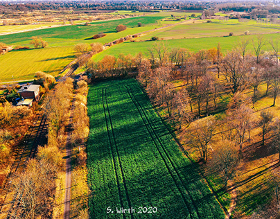 Field and meadows in Northern Berlin