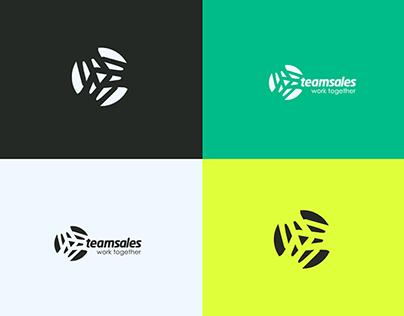 Teamsales Web Design & Front End Development