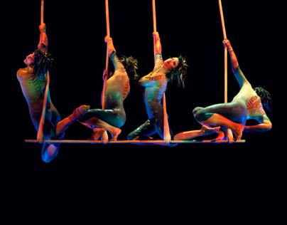 Circus and Salsa 2010 - 2013