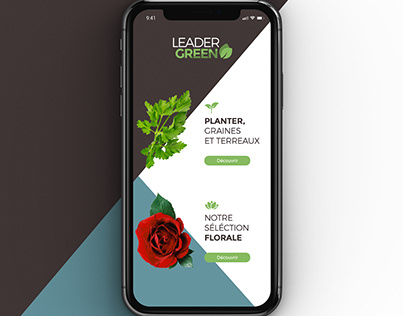 Web design Leadergreen