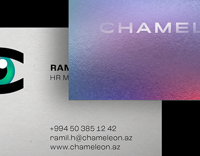 "Naming and Branding for ""Chameleon"""