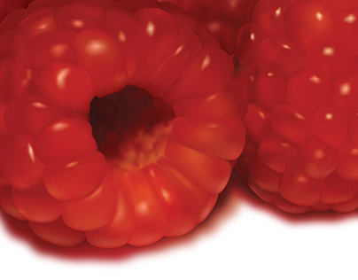 Vector Raspberries