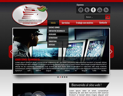 Flozav Corporate Site