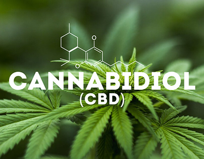 CBD for cancer and cancer-related side-effects
