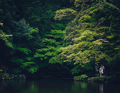 Meditative Moments: Japan 2016