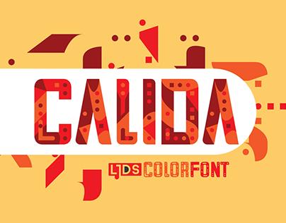 LJDS Calida fontype