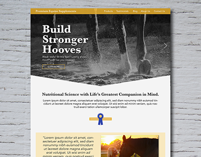 Quick Landing Page Mock-Up