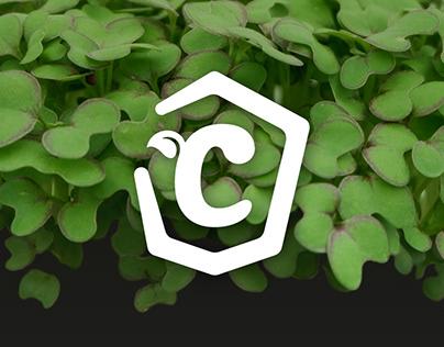 Cultindoors - Corporate Design