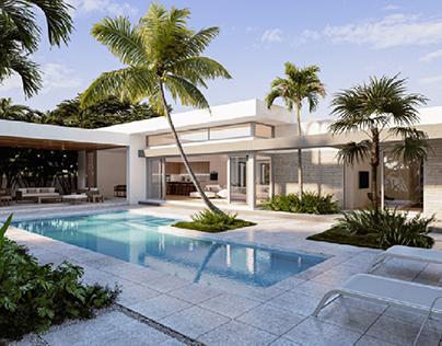 Palm 2020
