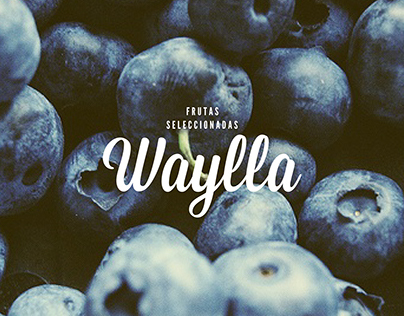 WAYLLA