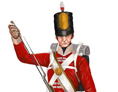 Napoleonic (Military Illustration)