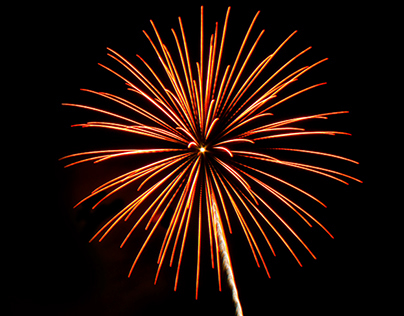 Orange Flower - Firework Light Painting