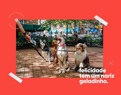 Woof Moda Pet | Branding & campanha