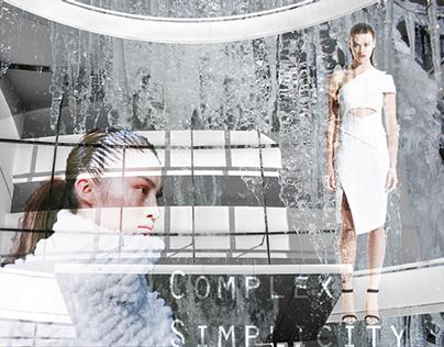 Complex Simplicity A/W 14 - Zara TRF Dresses