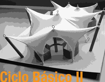 Ciclo Básico. Ejercicios Integradores. 201020