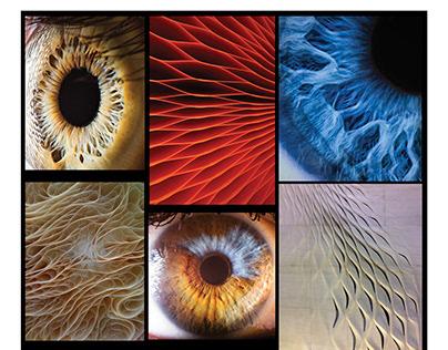 Human eye close up