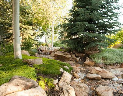 Landscape Design Photo Assignment