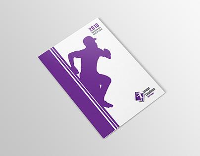 2018 Lower Loudoun Little League Program Design