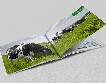 Catalogue of Products for Cattle A5 landscape catalogue