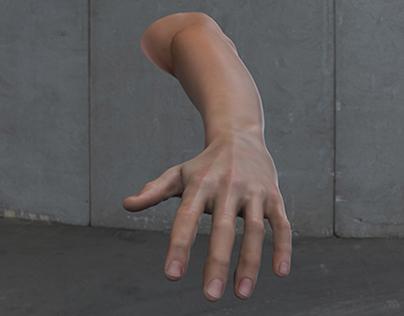 3d Hand / Arm