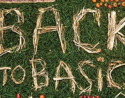 Back to Basics - Marketeer 216 cover
