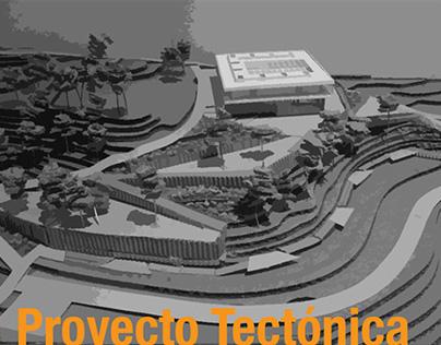 Proyecto Tectónica 201120