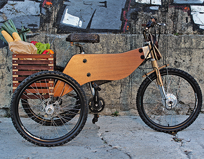 RAIOOO - Electric Wooden Tricycle