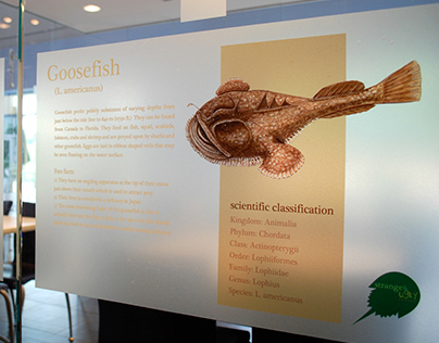 DuPont Exhibit Delaware Museum of Natural History