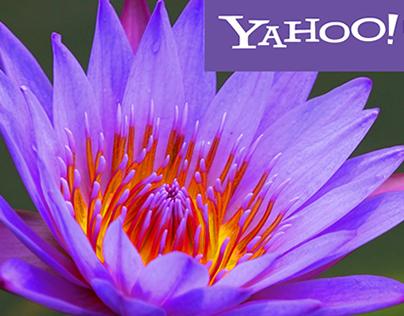 Yahoo Interactive Homepage
