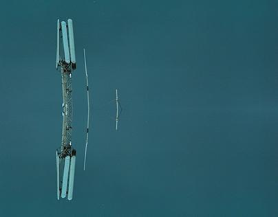 unidentified sky objects