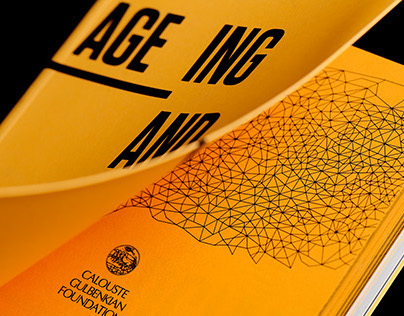 Ageing and Social Innovation Book