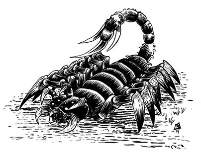 1879 Creatures