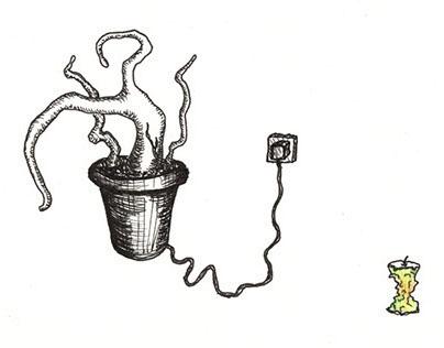 Plant 'light'