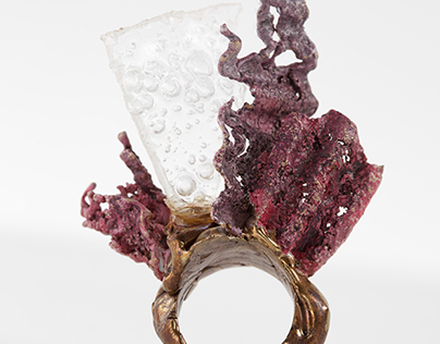 Consumption Ring Series