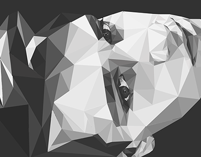 BW | Low-poly