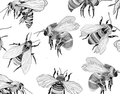 bees bees bees