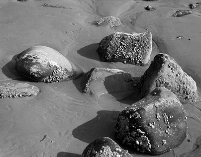 Rocks     Personal Project